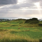 St. Francis Links